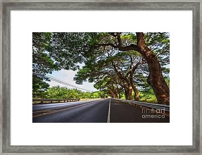 Island Drive  Framed Print by Jamie Pham