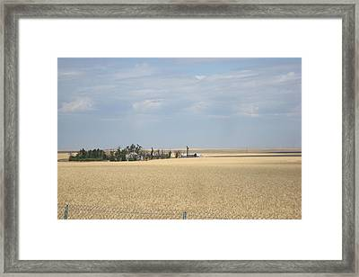 Island In Wheat Field Framed Print