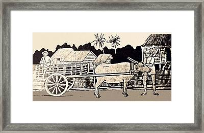 Island Life In 1898 Framed Print by Walter B Townsend