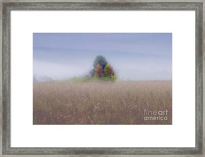 Island Of Color In Sea Of Fog Framed Print