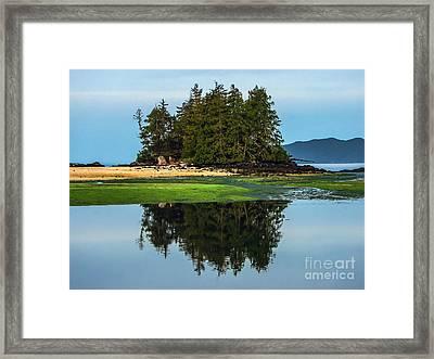 Island Reflection Framed Print by Robert Bales