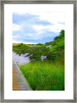 Island State Park Boardwalk Framed Print