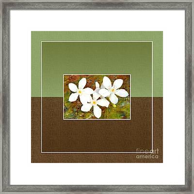 Islander-no1 Framed Print by Darla Wood
