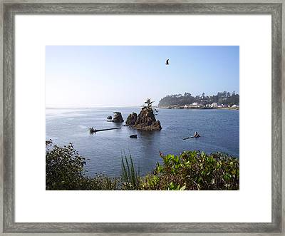 Islands On The  Coast Framed Print by Yvette Pichette