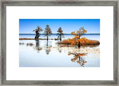 Isle Of Peace - North Carolina Framed Print by Dan Carmichael