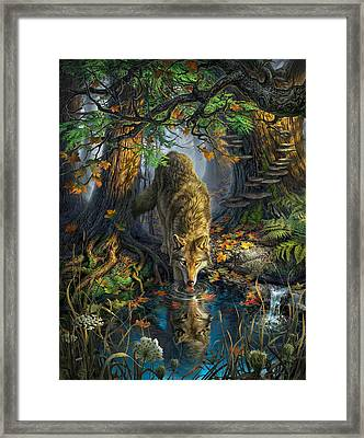 Isle Royale Fall Framed Print