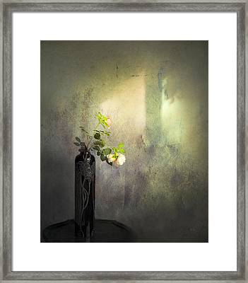 Isn't It Romantic Framed Print by Theresa Tahara