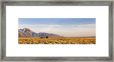 Isolated  Homestead   The Grand Tetons Framed Print