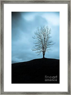 Isolation Framed Print by Syed Aqueel