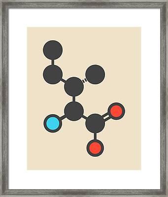 Isoleucine Amino Acid Molecule Framed Print by Molekuul