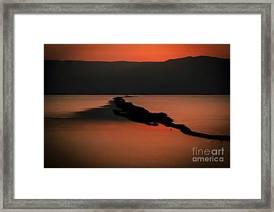 Israel Dead Sea 1 Framed Print by Dan Yeger