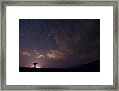 Iss Over Big Ears Framed Print by Cat Connor
