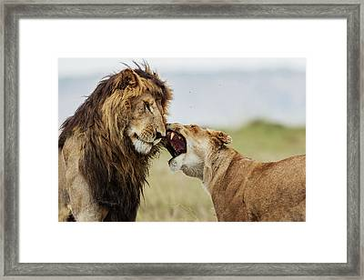 It Happens In The Best Families!!! 3 Framed Print