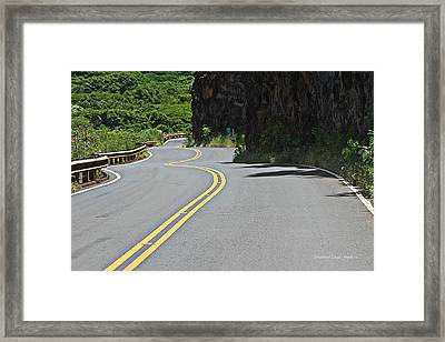 It Is All Downhill From Here Framed Print