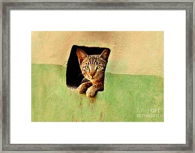 It Is My Home Framed Print