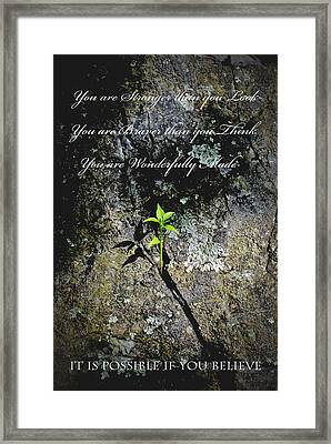 It Is Possible Framed Print by Swift Family