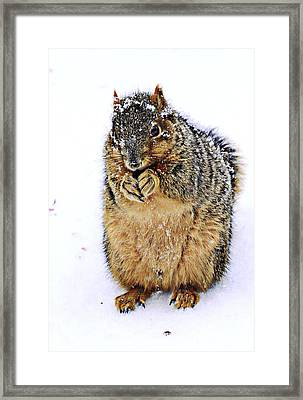It Is Really Cold Framed Print by Marcia Colelli