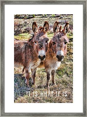 It Is What It Is Framed Print by James BO  Insogna
