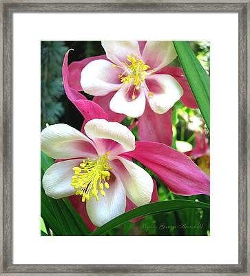 Framed Print featuring the photograph It Takes Two by Brooks Garten Hauschild