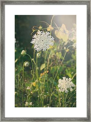 It Was A Summer Of Love Framed Print by Laurie Search