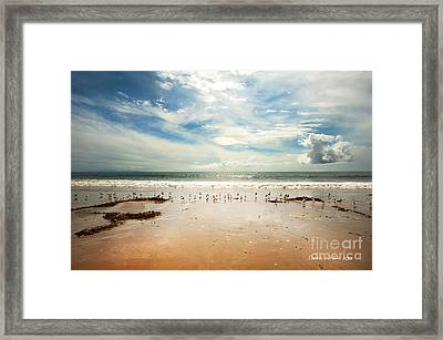 It Was A Sunny Day At The Beach From The Book My Ocean Framed Print by Artist and Photographer Laura Wrede