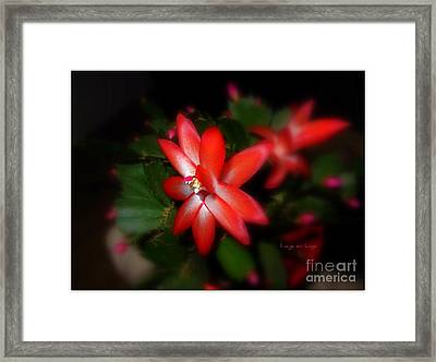 It Was Christmas Time Framed Print by Mariana Costa Weldon