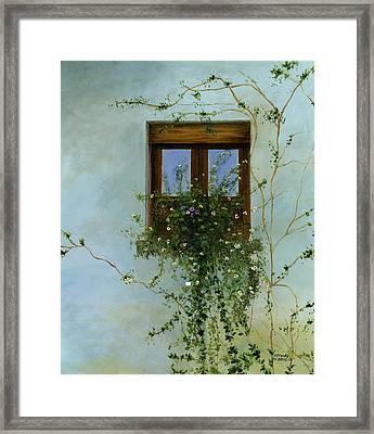 Italian Flower Window Framed Print