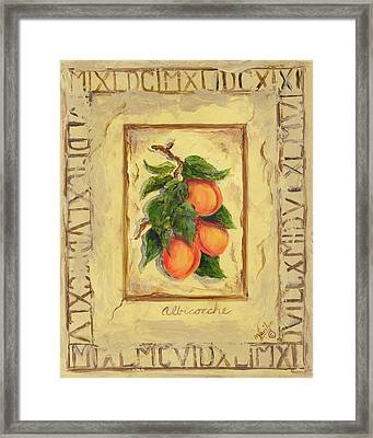 Italian Fruit Apricots Framed Print by Marilyn Dunlap