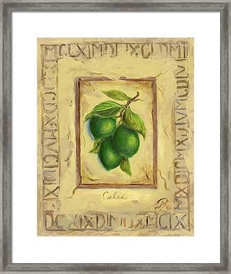 Italian Fruit Limes Framed Print by Marilyn Dunlap