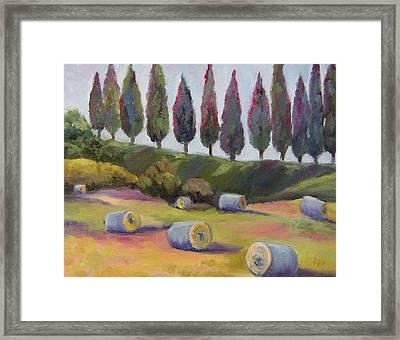 Italian Hay Bales Framed Print