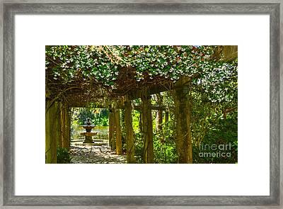Italian Pergola Garden Fountain  Framed Print