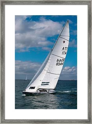 Italian Star Framed Print by David Smith