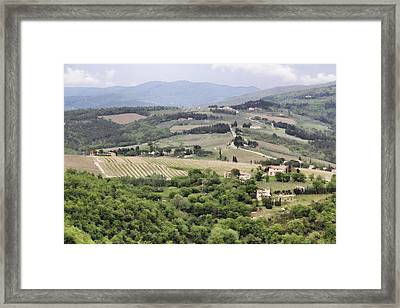Italian Vineyards Framed Print by Nancy Ingersoll