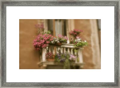 Italian Windowbox 1 Framed Print