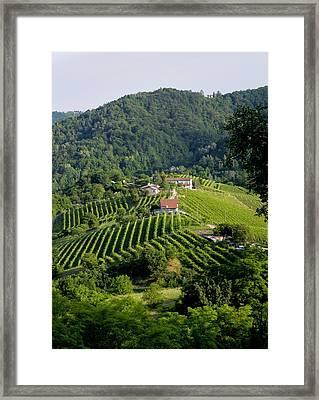 Italian Wine Prosecco Framed Print