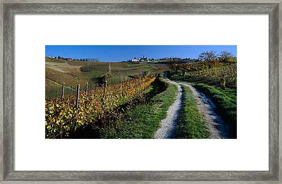 Italy, Piemont, Road Framed Print by Panoramic Images