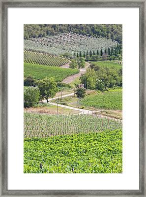 Italy, Radda Colle Bereto Winery Framed Print