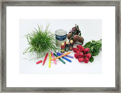 Items Containing Coloured Pigments Framed Print by Trevor Clifford Photography