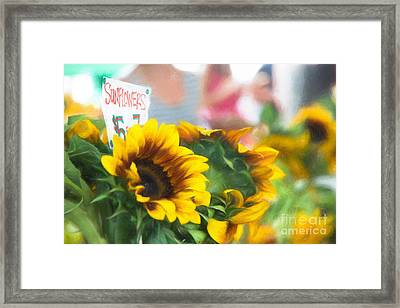 Farmer's Market Sunflowers Framed Print