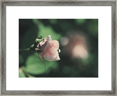 It'll Be Alright Framed Print