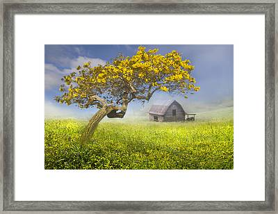 It's A Beautiful Day Framed Print by Debra and Dave Vanderlaan