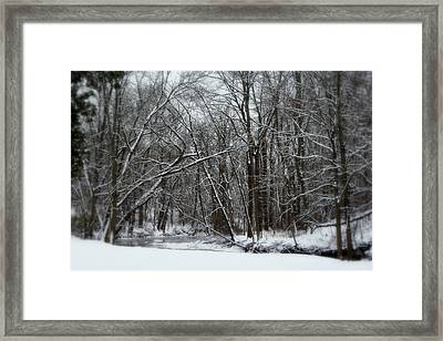 Its A Beautiful Winter Framed Print by Kay Novy