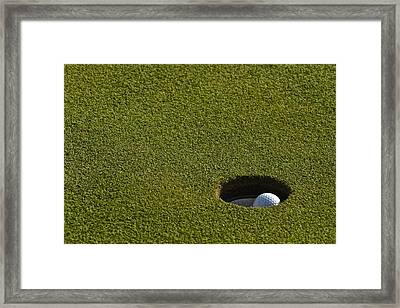 Its A Birdie Framed Print by Frozen in Time Fine Art Photography