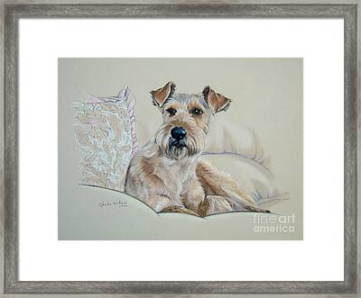 It's  A Dog's Life Framed Print by Sheila  Vickers
