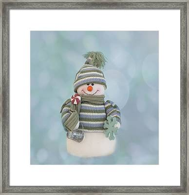 It's A Holly Jolly Christmas Framed Print by Kim Hojnacki