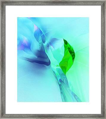 It's A Mystery  Framed Print by David Lane