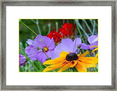 Its A Party Framed Print by Timothy J Berndt