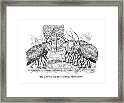 It's A Perfect Day To Reorganize Those Closets! Framed Print