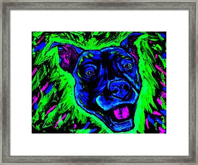 It's A Pitty Black Light Framed Print