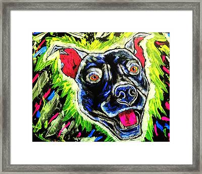 It's A Pitty Normal Light Framed Print by Lisa Brandel